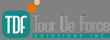 TDFソリューションズ – 業務プロセスの改善、可視化を支援します –